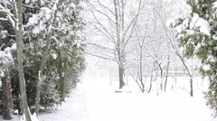 Snowing on white snowy background Stock Footage