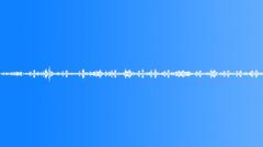 European Forest Ambience, bird сhorus, cuckoo, plane Sound Effect