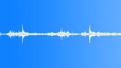 Swamp Sound Effect Äänitehoste