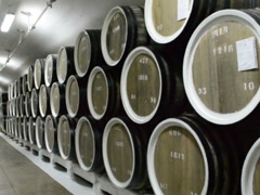 Winery and barrels with wine. Related clips are in my portfolio in 1920x1080. Stock Footage