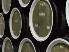Plant on production of wines. Related clips are in my portfolio in 1920x1080. Stock Footage