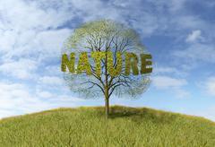 nature text on a tree - stock illustration