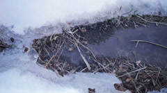 Melting snow - stock footage