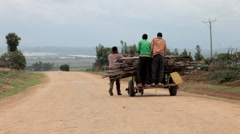 People on a horse-drawn cart carrying sticks Stock Footage