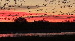 Sunrise Flyout Stock Footage