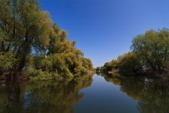 River channel in the danube delta Stock Photos