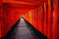 japanese temple path - stock photo