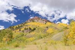 Aspen with mountain Stock Photos