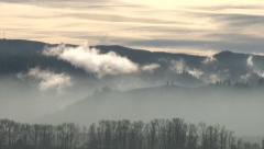 Mystic Forest Mountain Range Fog Stock Footage