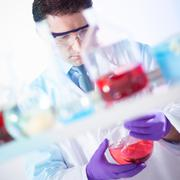 Chemist searching for the right solution. Stock Photos