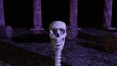 Vampire Skeleton Snake Slithers, then Strikes in Tilt-Shift (film grade) Stock Footage