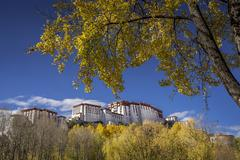 China, Tibet Autonomous Region, Potala Palace in autumn - stock photo