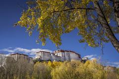 China, Tibet Autonomous Region, Potala Palace in autumn Stock Photos