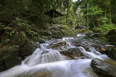 Malaysia, Sungai Tekala Recreational Forest Stock Photos