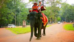Siem reap, cambodia - circa dec 2013: large adult asian elephant approaches a Stock Footage
