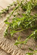 Raw organic green savory Stock Photos