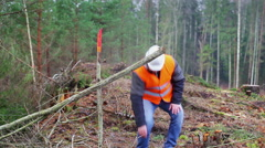 Forest worker try to move branch in the forest Stock Footage
