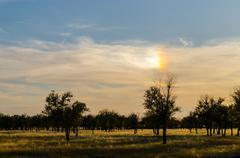 Sky with a rainbow in the sun Kuvituskuvat