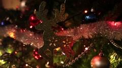 Christmas Reindeer Stock Footage