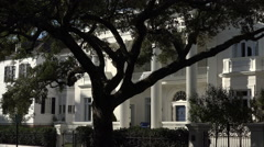 silhouette tree and antebellum house, south battery, charleston, sc, usa - stock footage