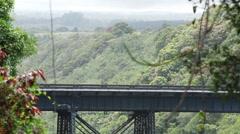 Manmade bridges in Hawaii Stock Footage