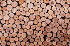 Stock Photo of wood log texture background