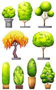 Stock Illustration of Sets of decorative plants