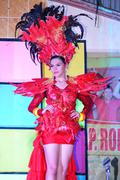 miss daliao 2014 - stock photo