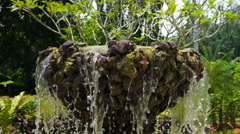 Stone fountain surrounded by greenery. - stock footage