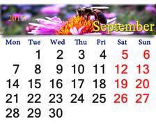 calendar for september of 2015 with bee on flower - stock illustration