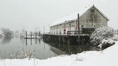 Scotch Pond, Steveston, BC Snow - stock footage