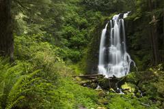 Kentucky falls waterfall Stock Photos