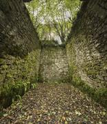old cobblestone ruins creating a room with walls in a forest - stock photo