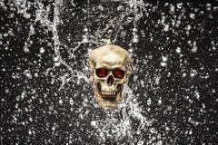 skull splash - stock photo