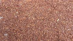 Drying grain Stock Footage