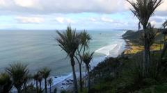 Nikau palms on hills over the Mangawhai coast Stock Footage