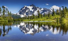 picture lake evergreens mount shuksan washington usa - stock photo