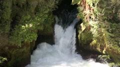 Scenic Okere Falls waterfall Stock Footage