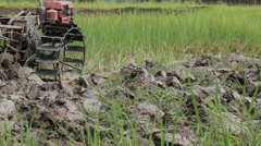 Farmer grade the land by pushcart before transplant rice seedlings, thailand Stock Footage