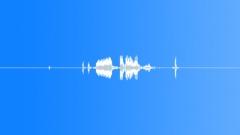 radio code voice from cb radio: roger - sound effect
