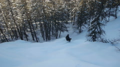Free-ride skiing down into the forest Stock Footage