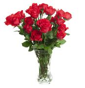 two dozen red roses isolated on white background with the green stems in a la - stock photo