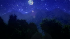 Stars and Moon Over Forest Stock Footage