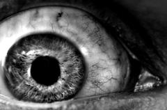 Abstract closeup of a dark eyeball wide open. Stock Photos