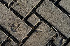 Old brick pattern in zigzag design with grass growing in between the cracks Stock Photos