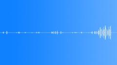Animals_chiffchaff_04 Sound Effect