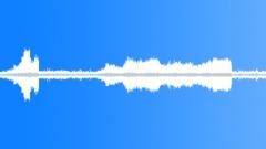 Animals_grasshopper warbler_02 Sound Effect