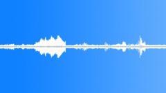 Animals_grasshopper warbler_03 Sound Effect