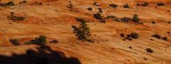 Sedimentary sandstone layers Stock Photos