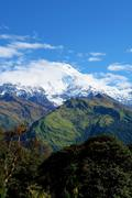 "View of ""Fish Tail"" mountain, trek to base camp Annapurna conser - stock photo"